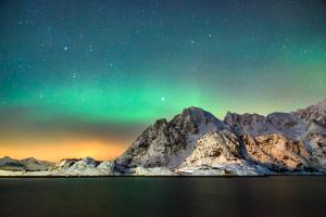 Nordlicht in Henningsvaer, Lofoten